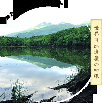 世界自然遺産の知床
