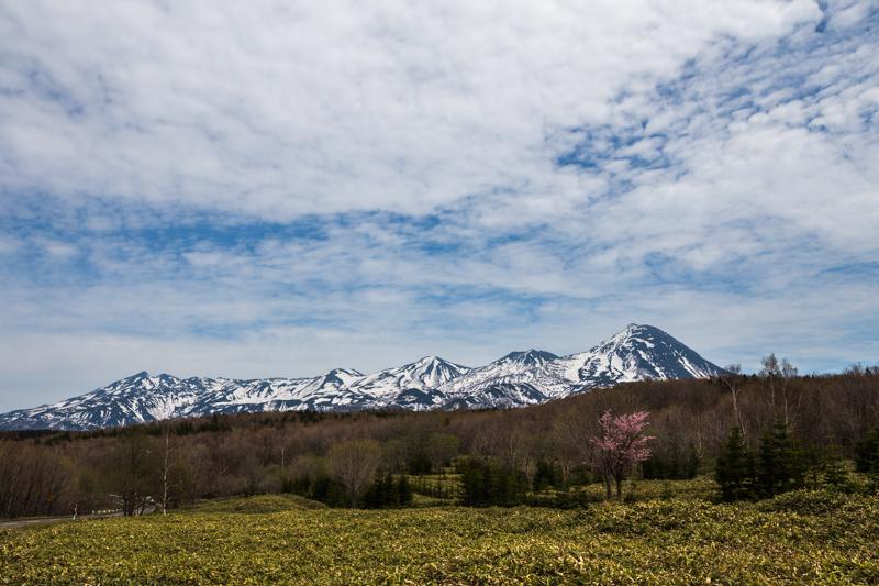 20140512-Canon EOS 6DIMG_3266